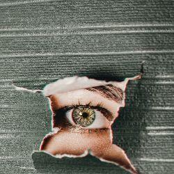 cojest dobre na poprawe wzroku